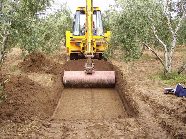 Sondeo arqueológico en olivar